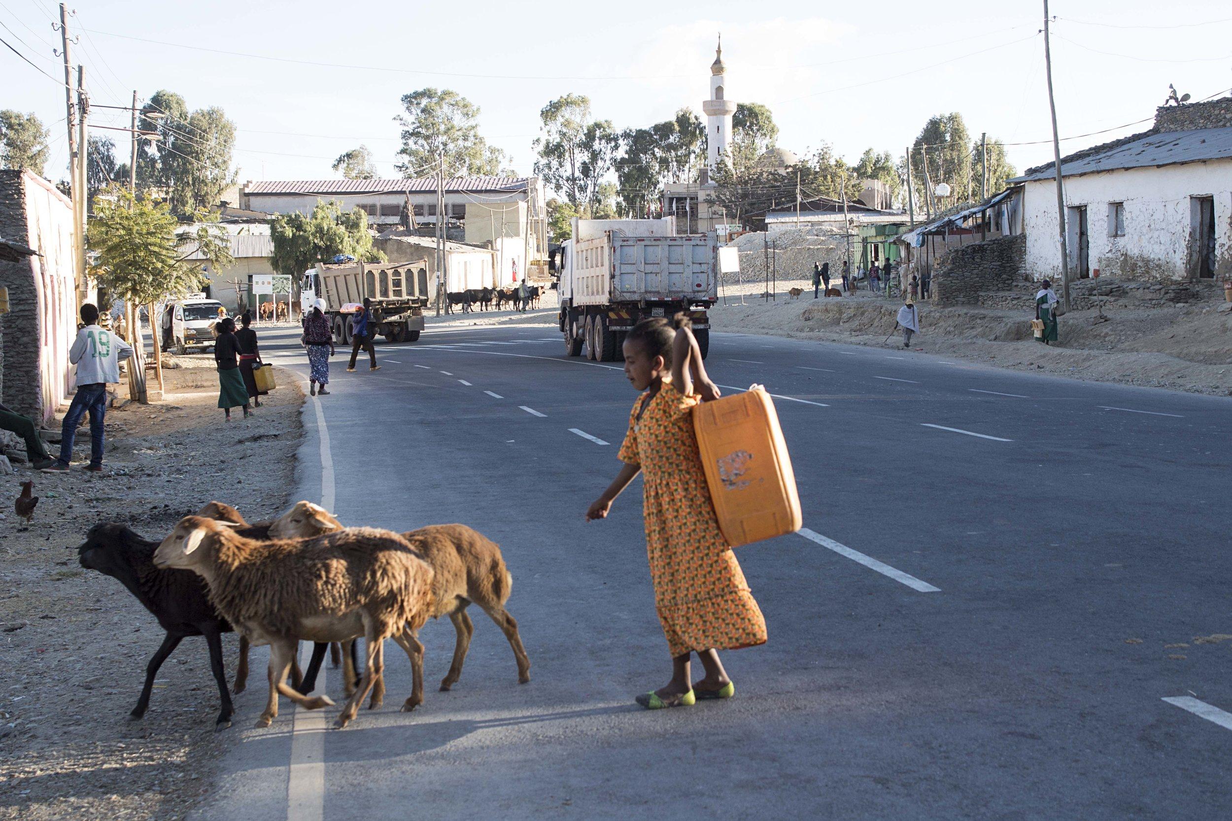 girl_goats.jpg