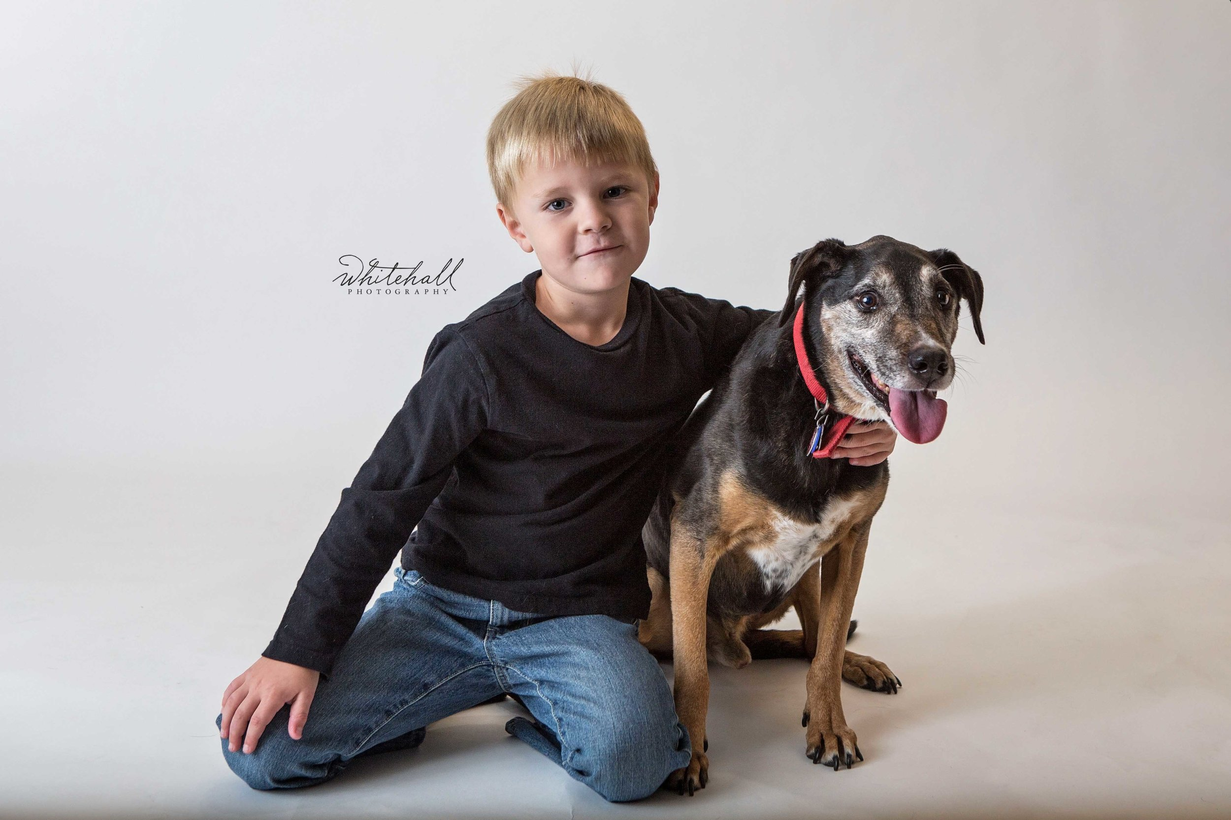 Dog_Photography_St_Louis_002.jpg