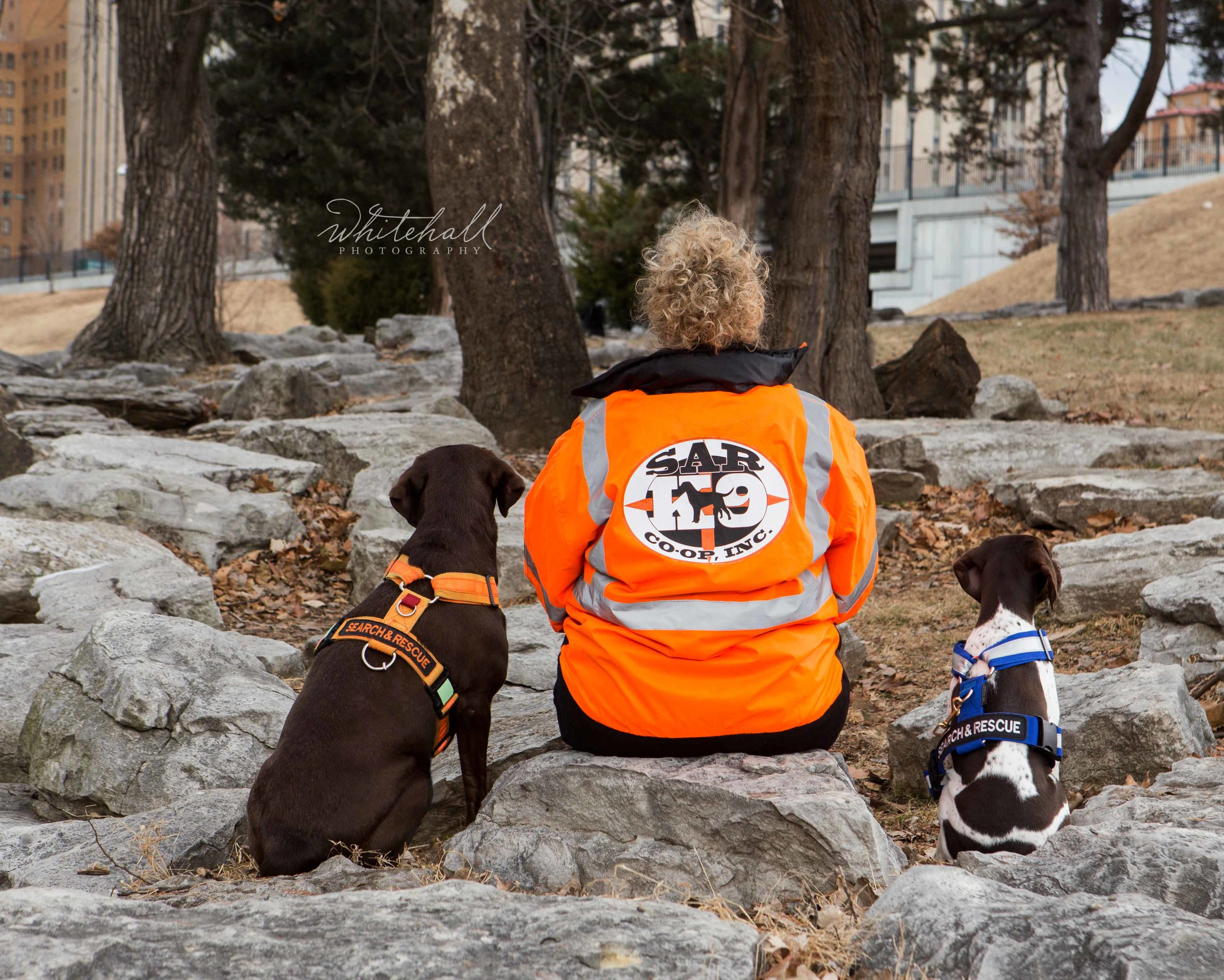 St_Louis_dog_photographer_search_and_rescue_005 tm.jpg