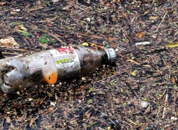 Japan willing to take SEA's trash