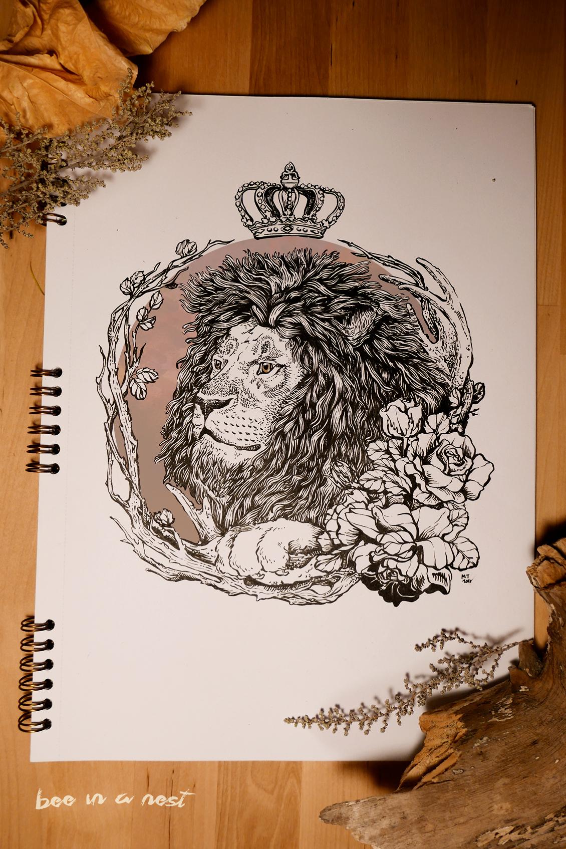 lion_michela-tannoia_2.jpg