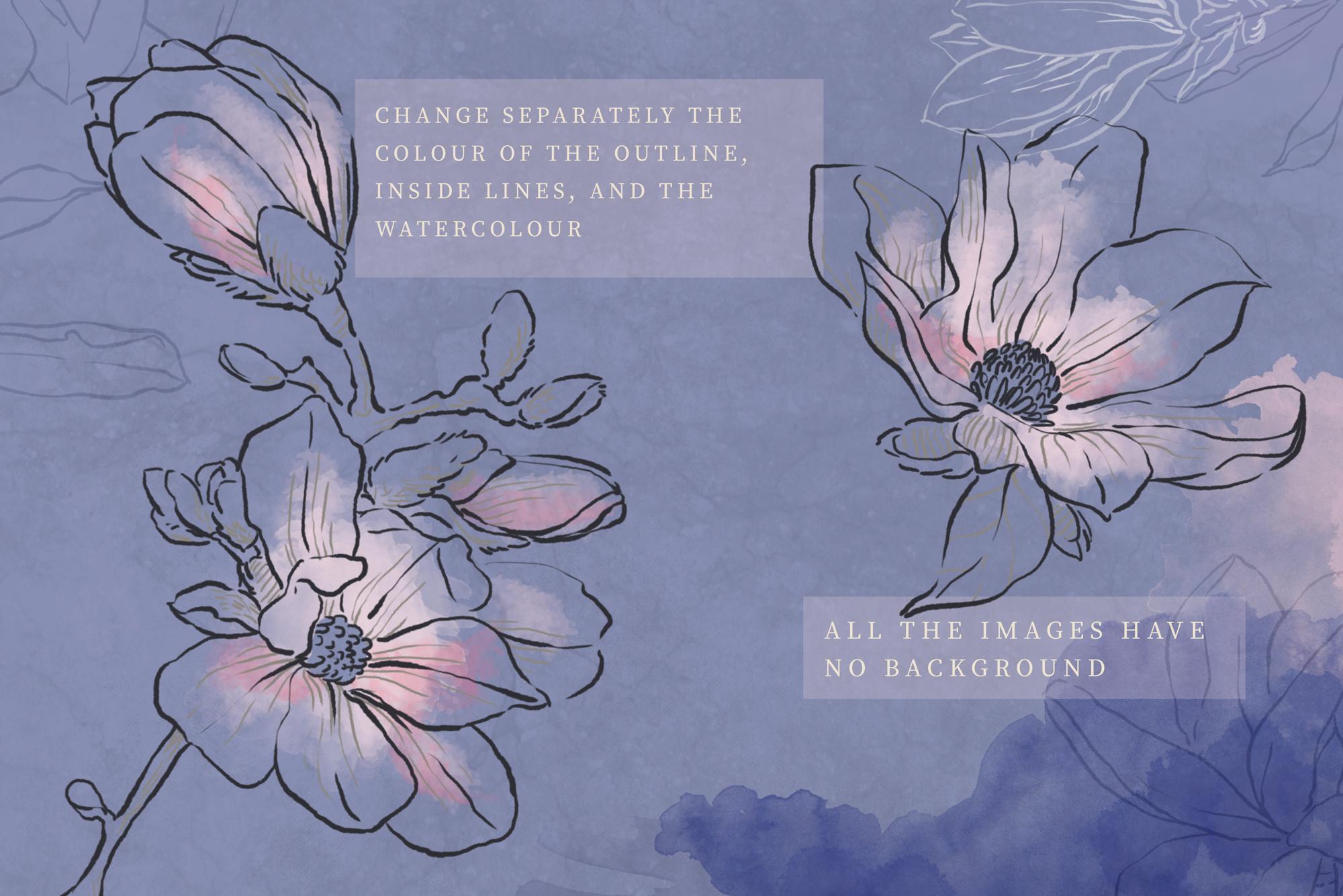 Magnolia-colore_michela-tannoia_2.jpg
