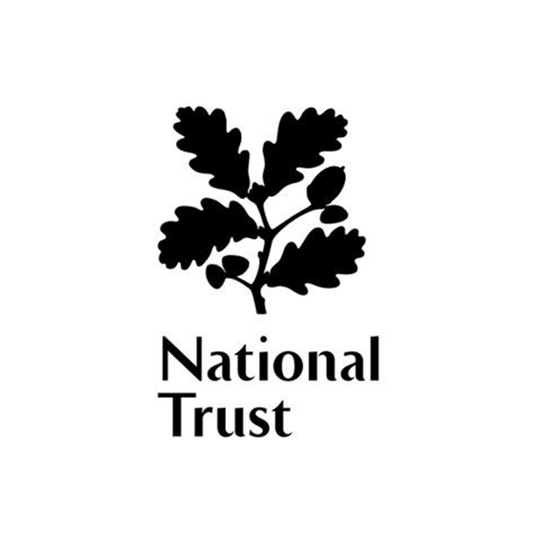BRILL_NT_Logo.png