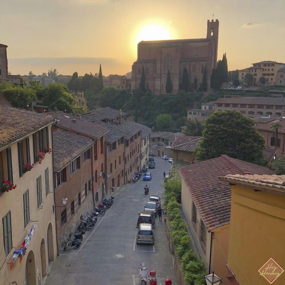 Siena 13.jpg