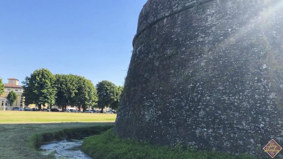Lucca 15.jpg