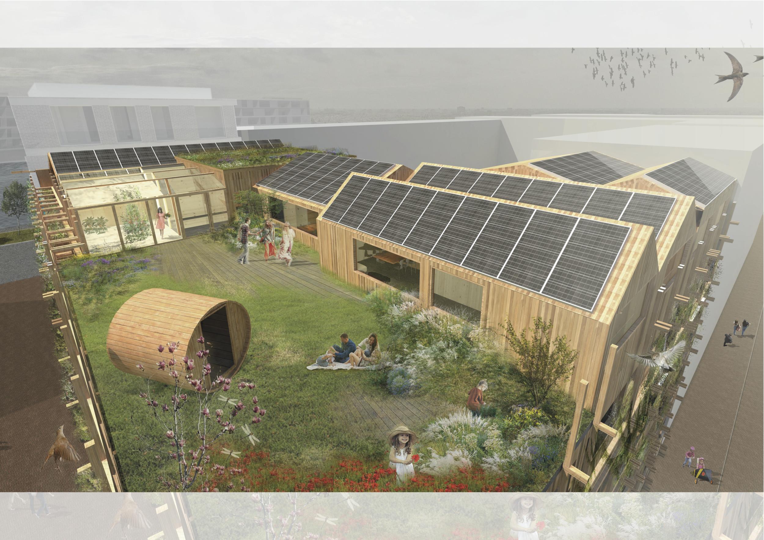 Het groen dak voor mens en dier (c) Natrufied Architecture