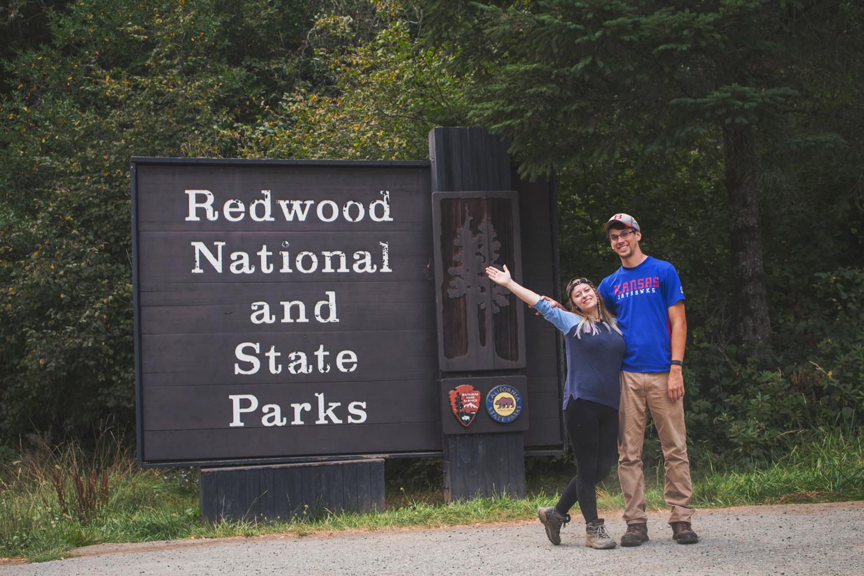 2-Redwoods-2017_095.jpg