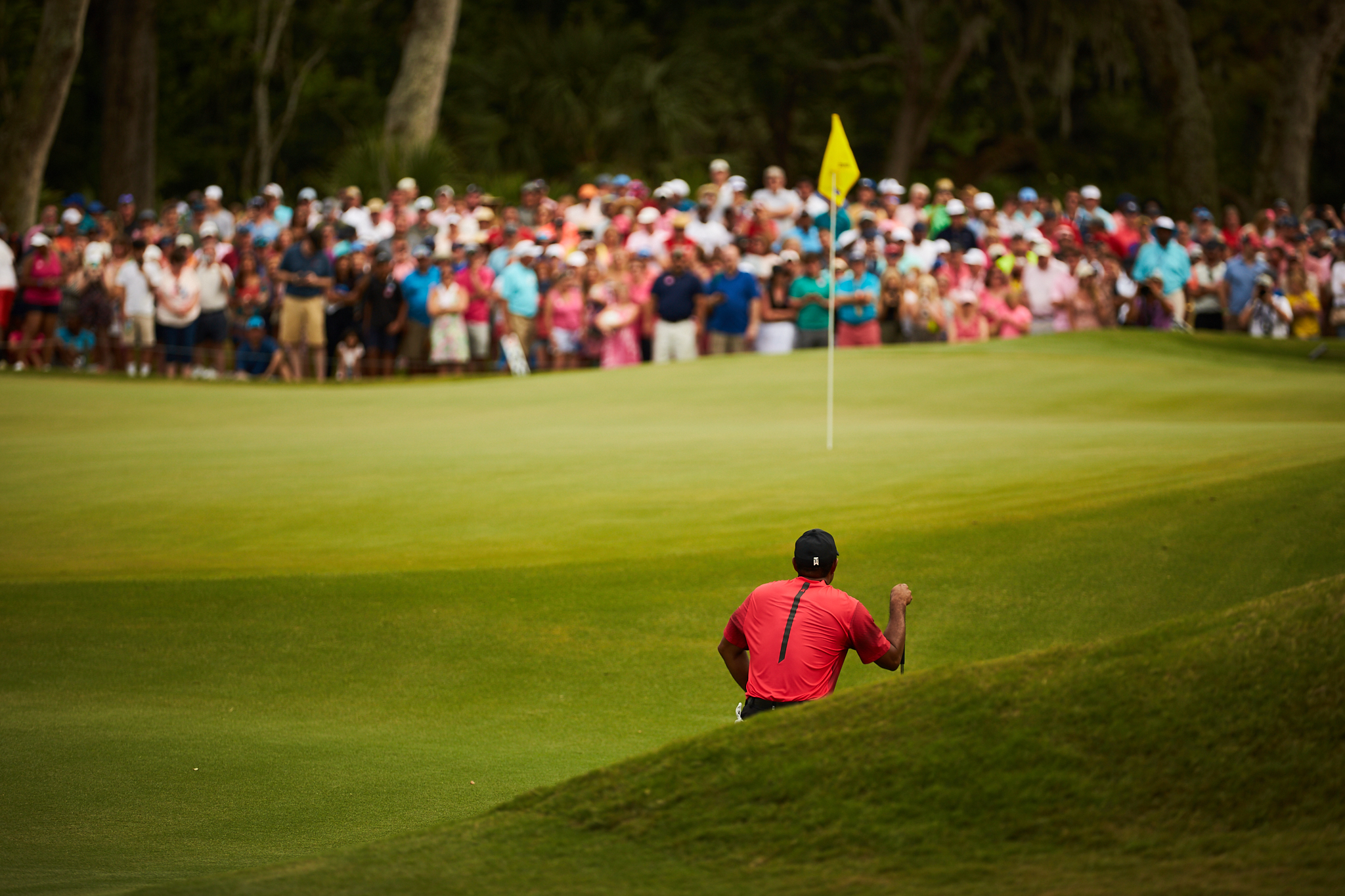 Tiger Woods, 14th green . Canon 1DX, Canon EF 70-200mm f2.8L II