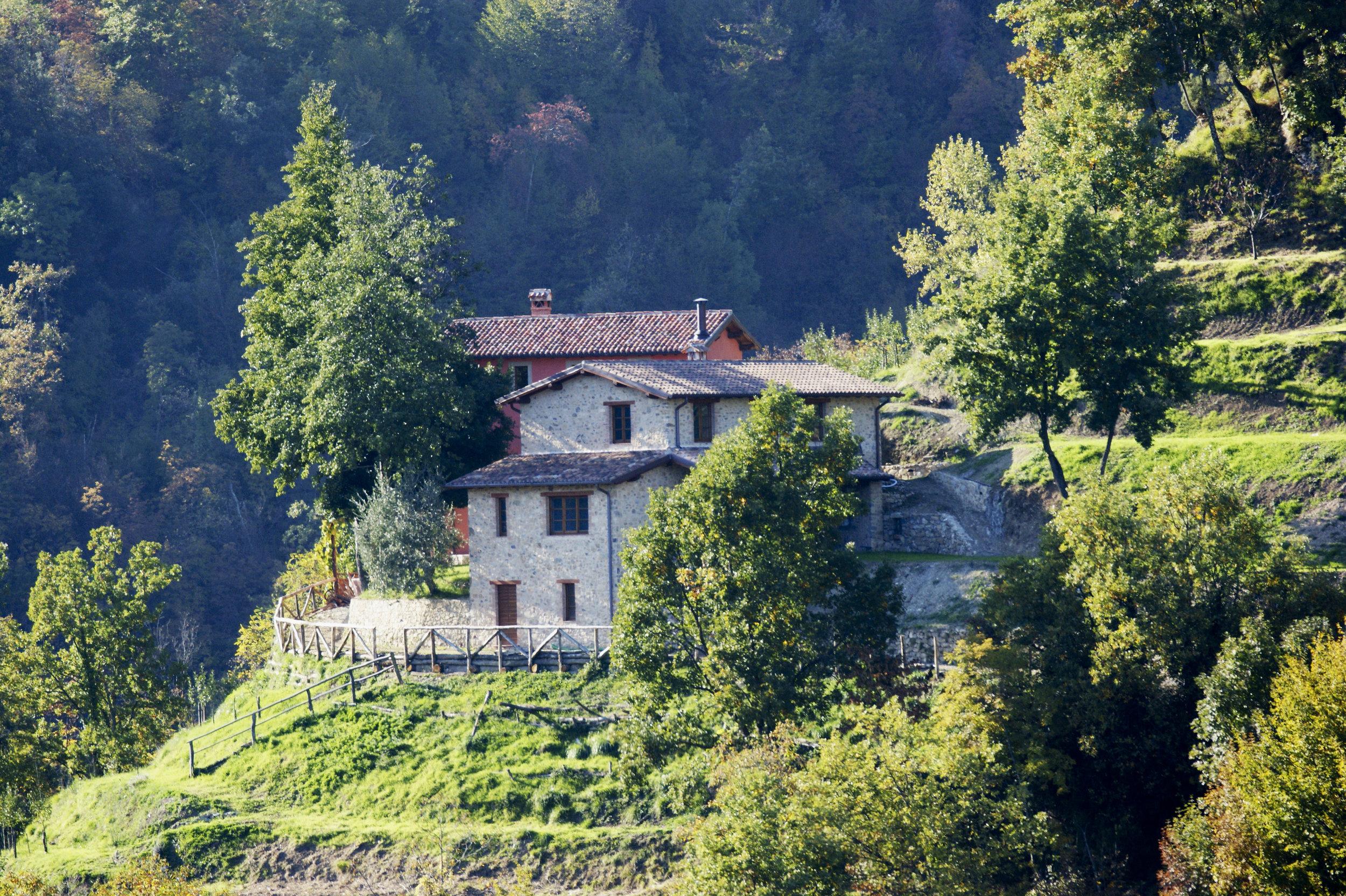 Houses -
