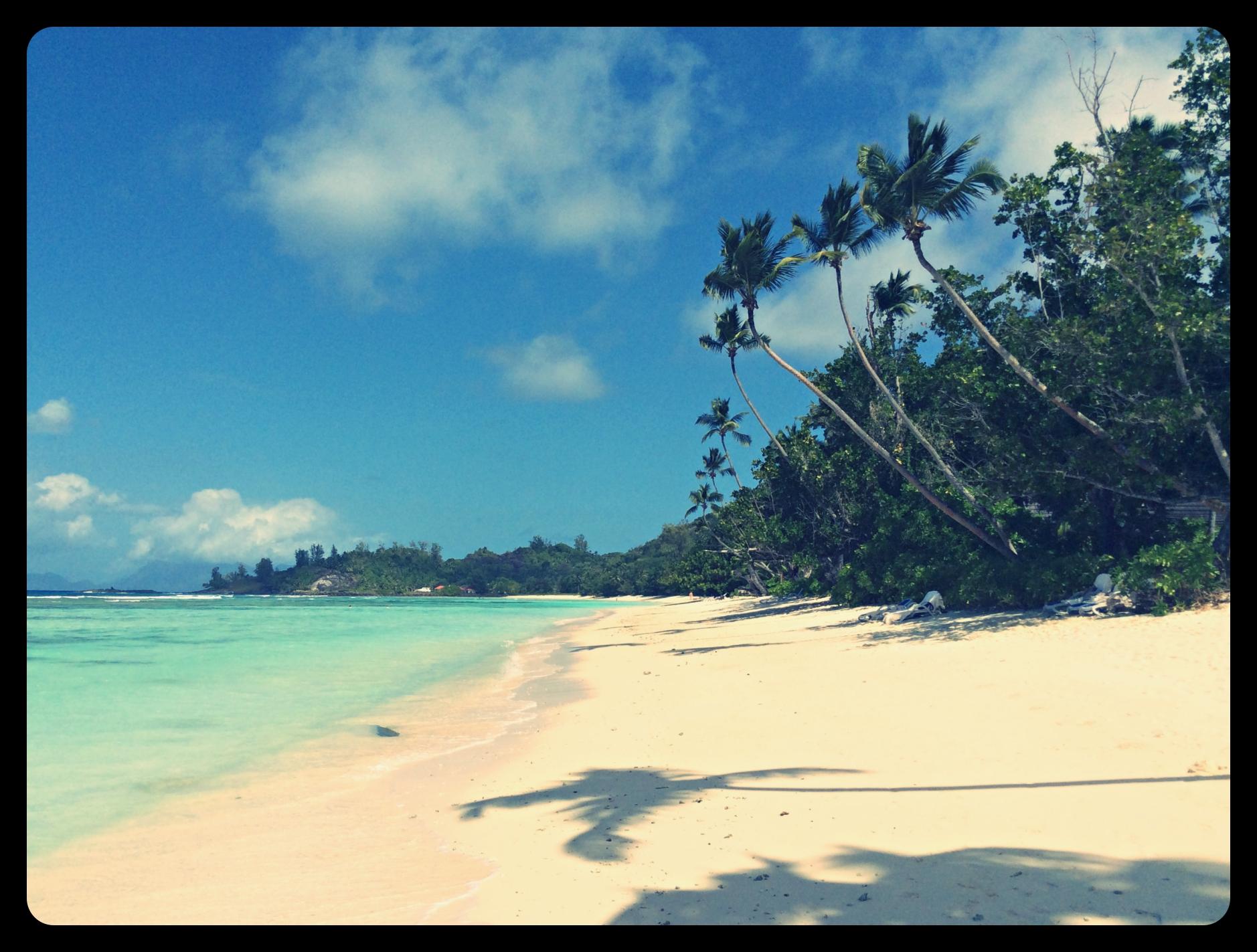 beach_hilton_altertonative.JPG