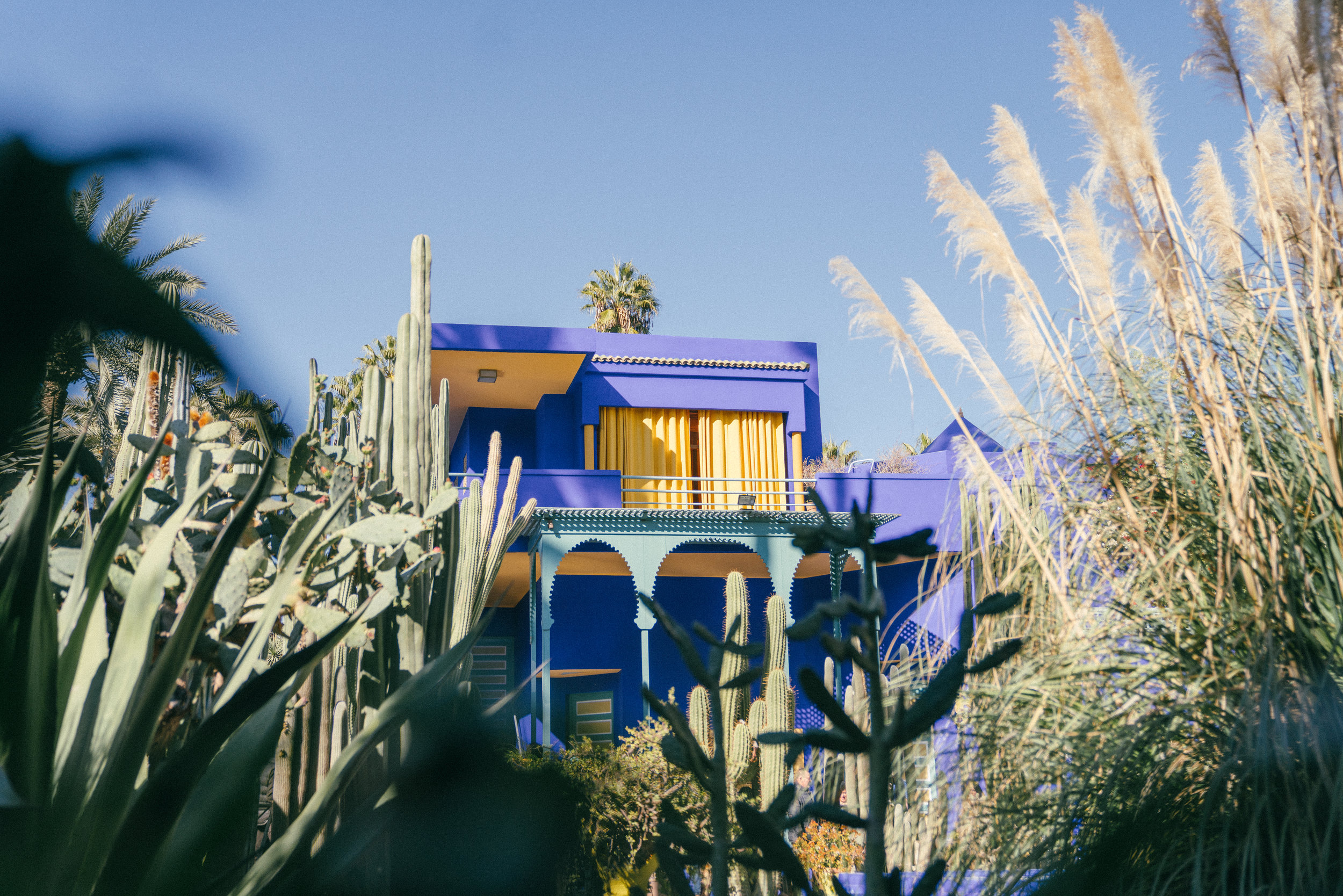 jardin.majorelle.altertonative.JPG
