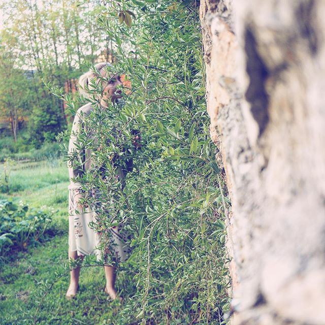 🇵🇱W @dzikie_roze czułam się jak w Tajemniczym Ogrodzie 💛 A gdzie jest twoje tajemnicze miejsce? 😳 . . 🇬🇧In @dzikie_roze I felt like in the Secret Garden 💛 Where's your secret place? 😳 . . #wildgarden #garden #inthegarden #secretplaces #beautifulplaces #greener #polandisbeautiful #discoverpoland #discoverpolska #visitpoland #lowersilesia #wildroses #hiddengarden #igtravelworld #polishtravelblogs #girlsborntottavel #igpolska #polskawieś #wogrodzie #tajemniczyogród #zieleń #ogród #dzikieróże #zwiedzampolskę #zwiedzamy #odkrywajpolskę #inspiracje #podrozniczka #polskieblogipodroznicze #altertonative