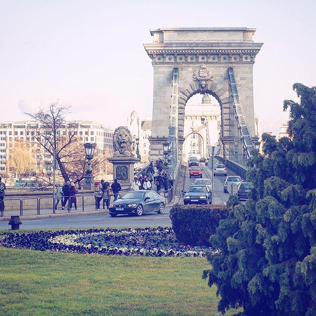 🇵🇱 Mostem Małgorzaty dojedziecie na wyspę Małgorzaty, a tam czeka na was najpiękniejszy park w Budapeszcie 😍 Na pewno znajdziecie tam trochę cienia 🏖 Kto go zwiedzał? ☺️ . . Through Margaret Bridge you will reach the island of Margaret, where the most beautiful park in Budapest is waiting for you 😍 You will definitely find some shadow there 🏖 Who has seen it? ☺️ . . #budapest #margaretisland #park #bridge #capital #visitbudapest #discoverbudapest #hungary #citybreakers #sightseeing #parkinbudapest #margaretbridge #polishtravelblogs #travelbloggers #budapszet #most #wyspa #wyspamałgorzaty #węgry #zwiedzamy #wpodróży #polskiblogpodróżniczy #podróżniczka #weekendtrips #altertonative #wakacje #odpoczynek #summerinthecity #parki