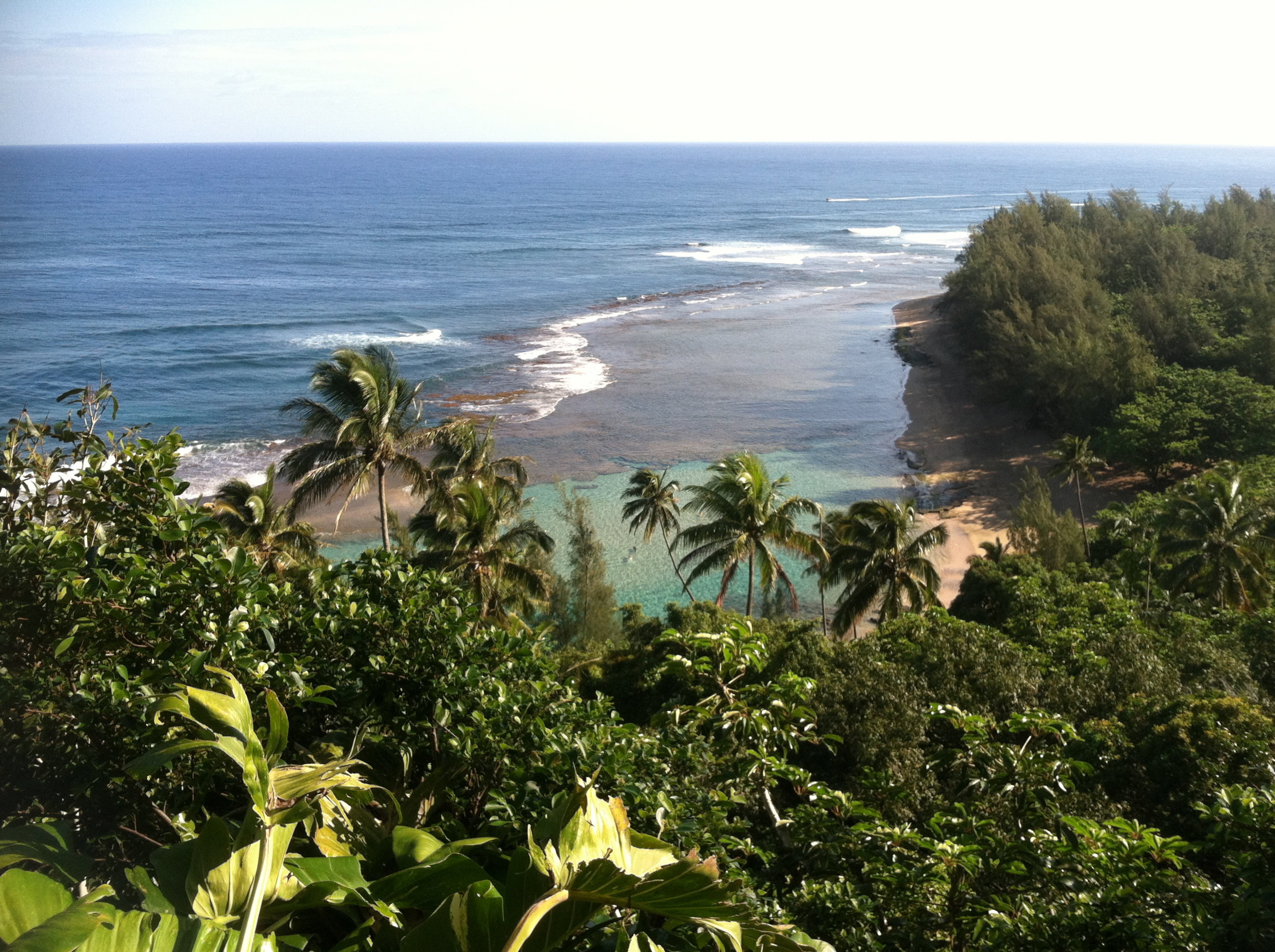 Take me to Hawaii!