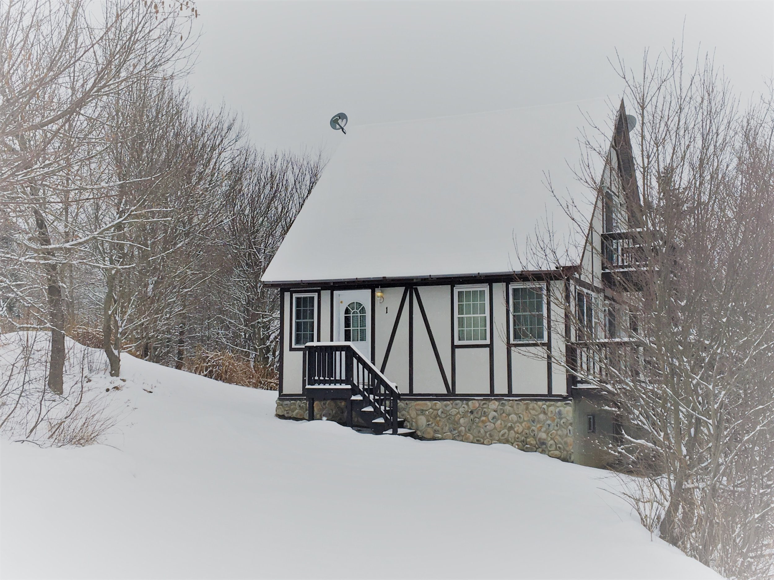 Lingerhere- fresh snowfall.jpg