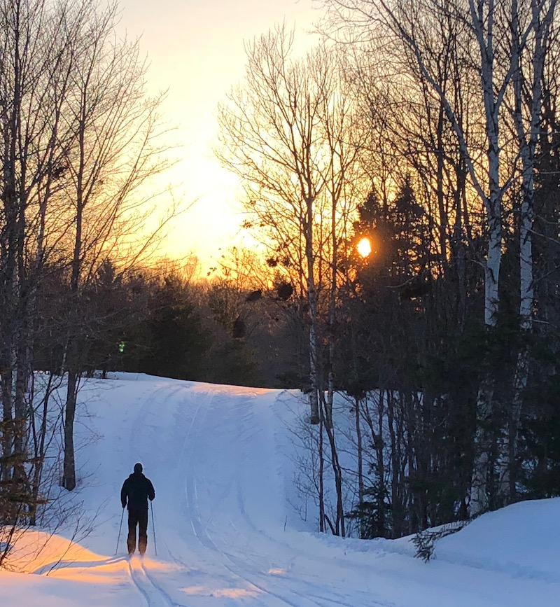 Swedetown Papa Bear trail
