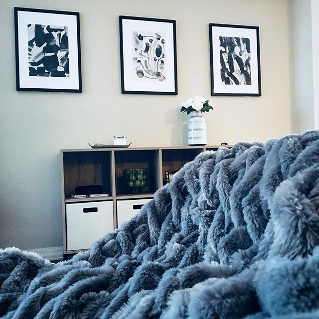 For anyone who is looking for me today, please note that I can be found under my new faux fur throw. #homedecoraddict