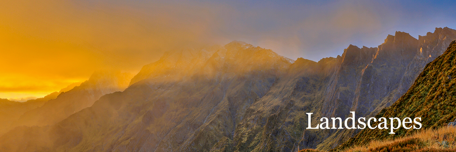 Fox Glacier 6_1500X500_TEXT.jpg