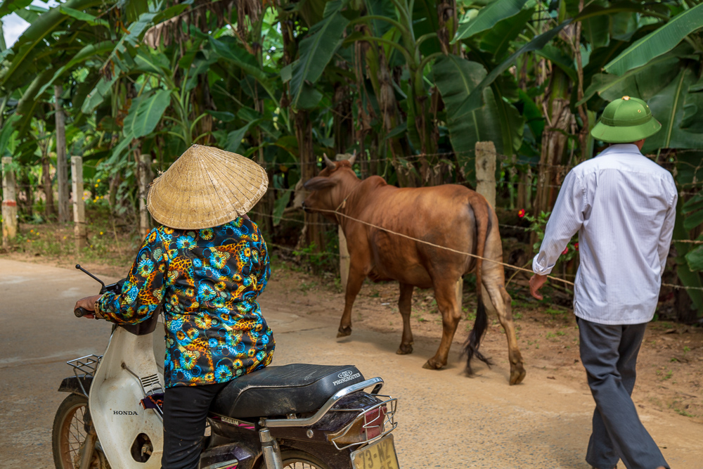 Locals in Phong Nha, Vietnam © Kim I. Mott, all rights reserved