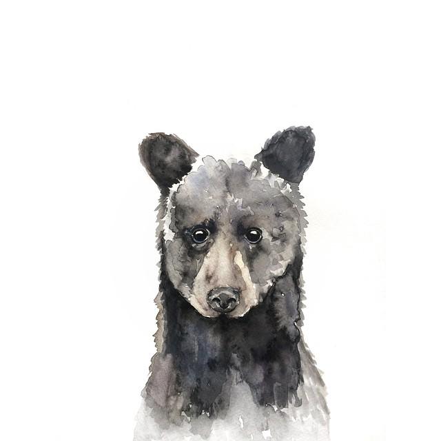 Black bear watercolor | ampersandmother.com