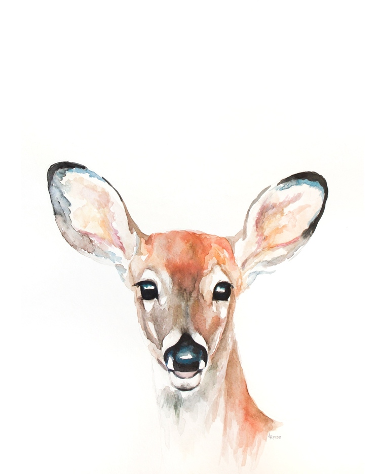 Fawn watercolor | ampersandmother.com