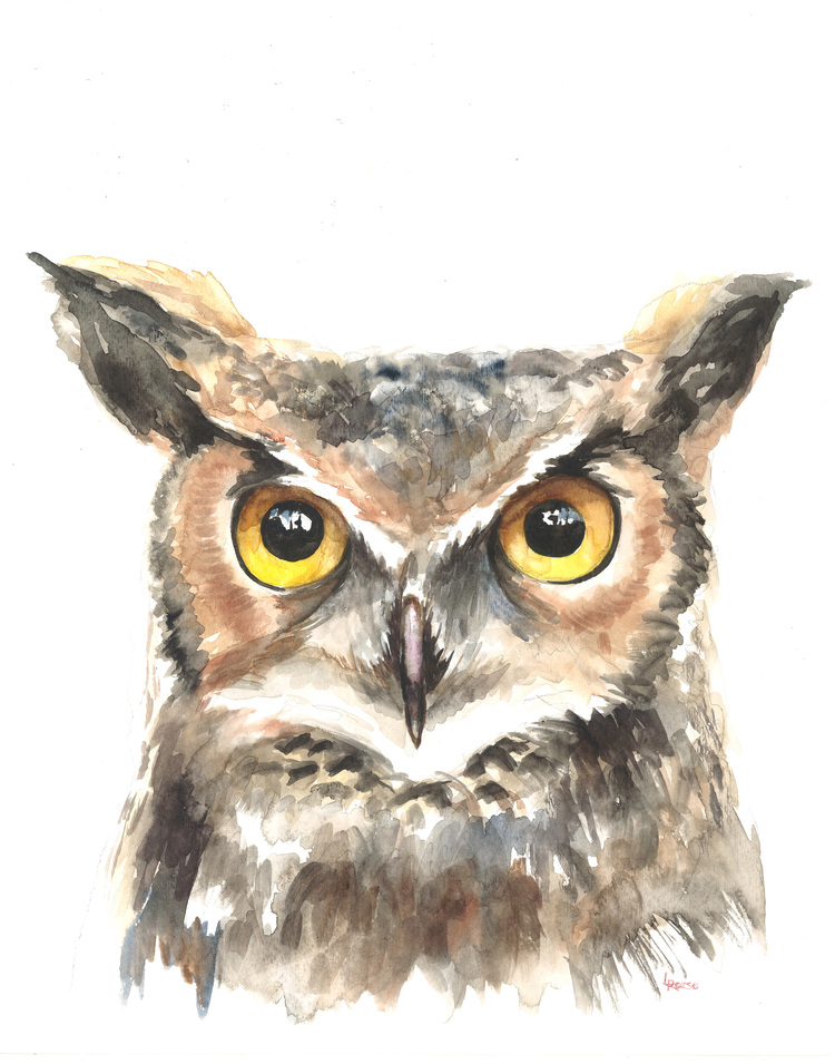 Owl watercolor | ampersandmother.com