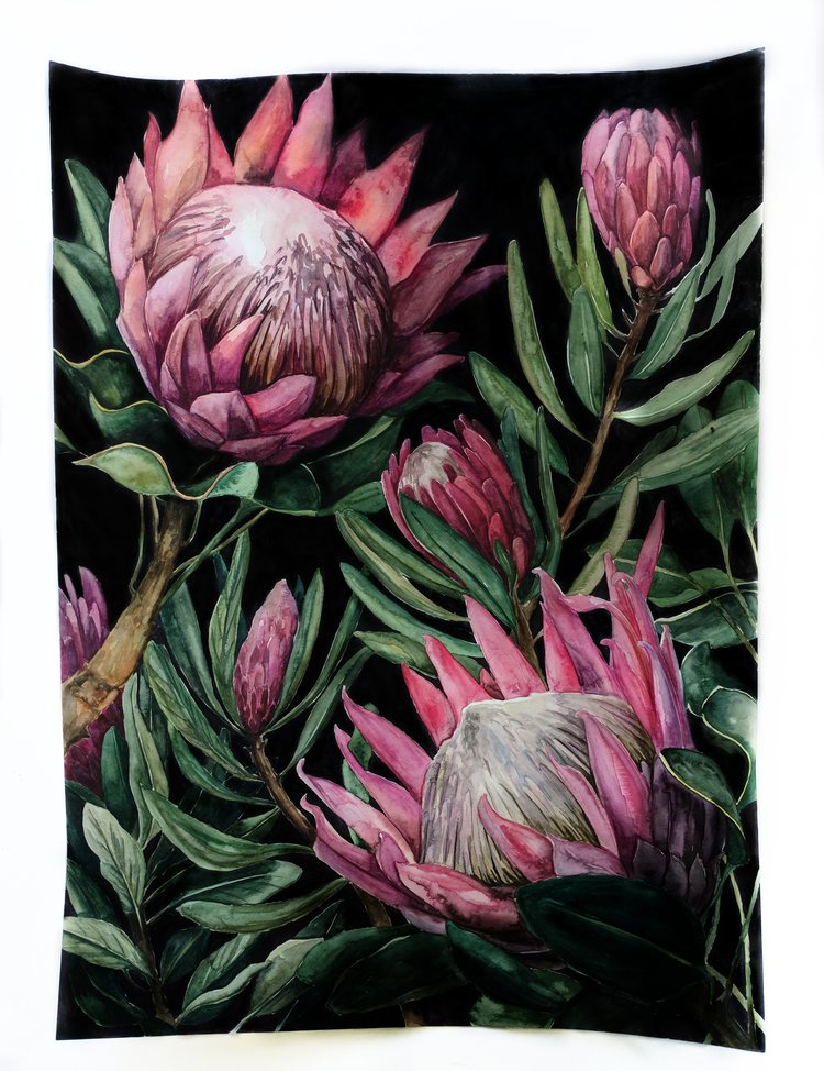King protea watercolor tapestry  | ampersandmother.com