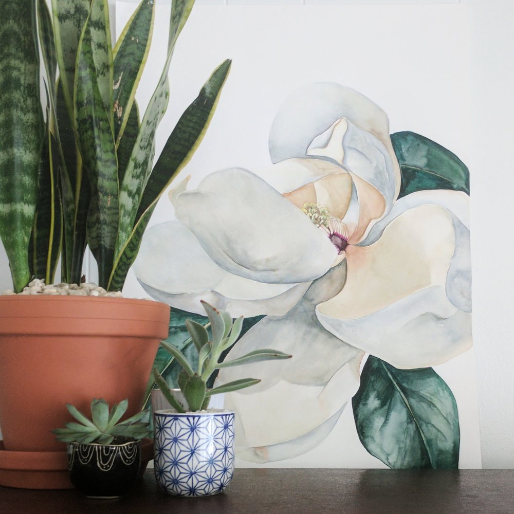 large magnolia watercolor | ampersandmother.com