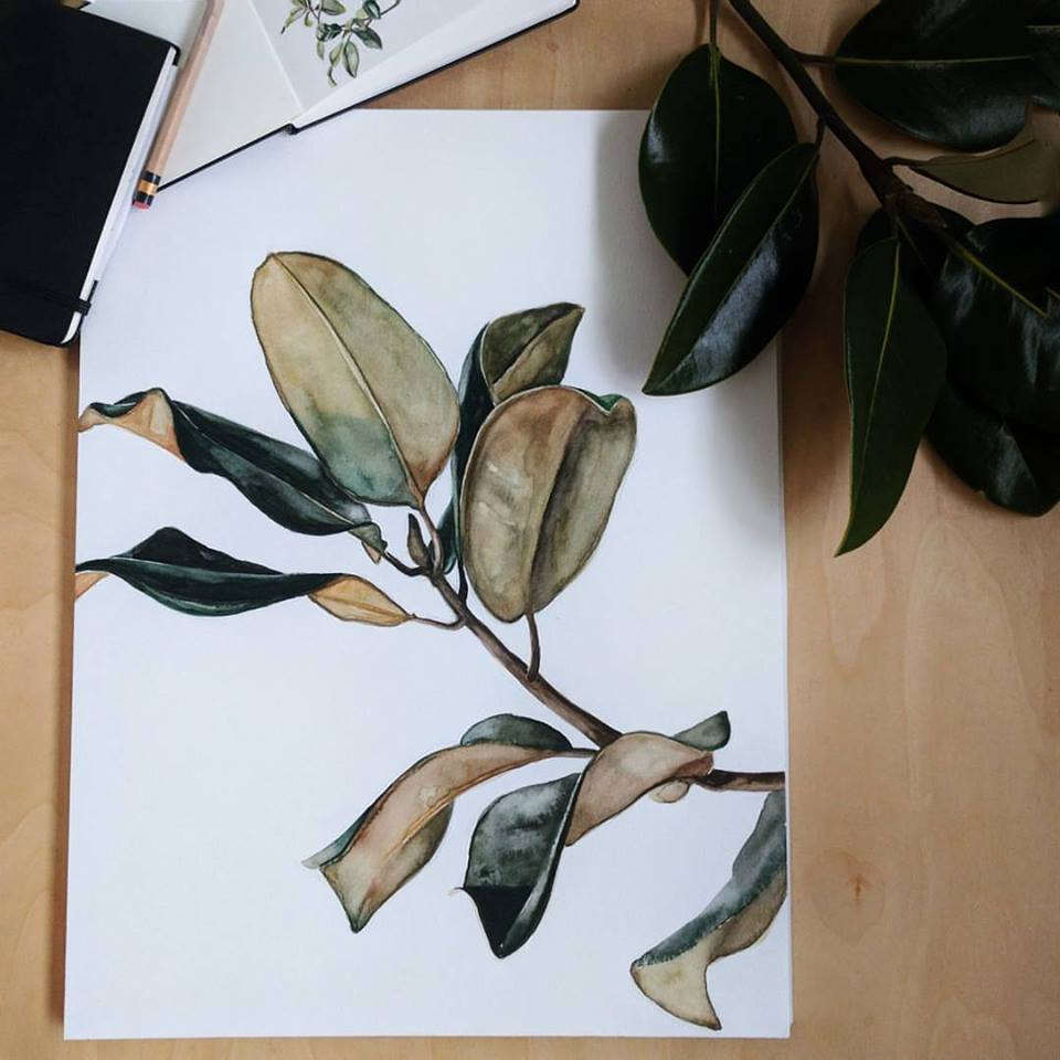 watercolor magnolia branch | ampersandmother.com