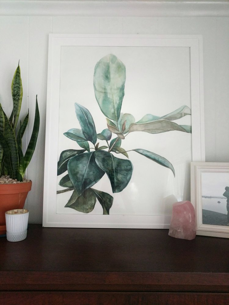 Magnolia branch watercolor | ampersandmother.com
