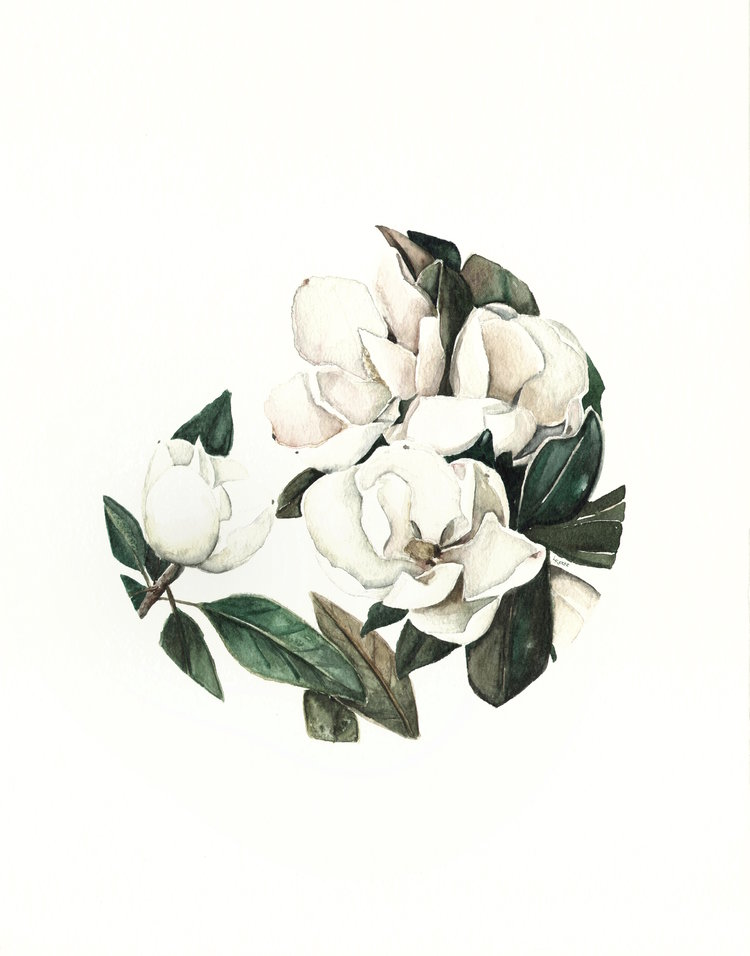 Watercolor magnolia | ampersandmother.com