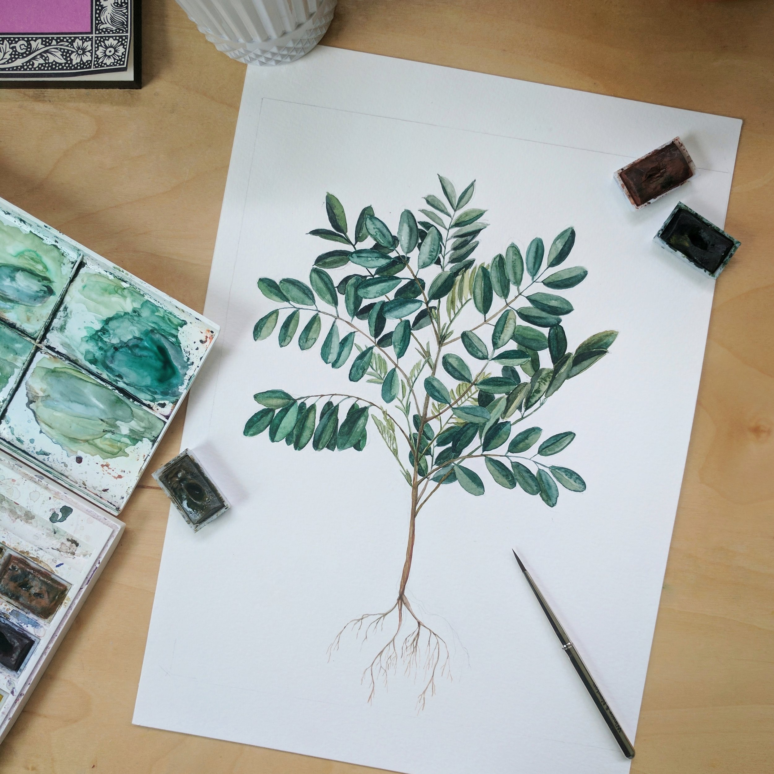 indigo plant watercolor | ampersandmother.com