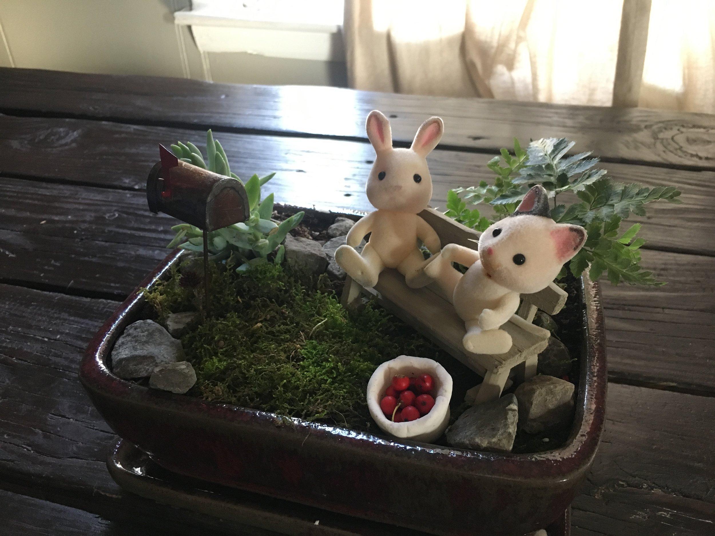 Fairy Garden DIY | Ampersandmother.com