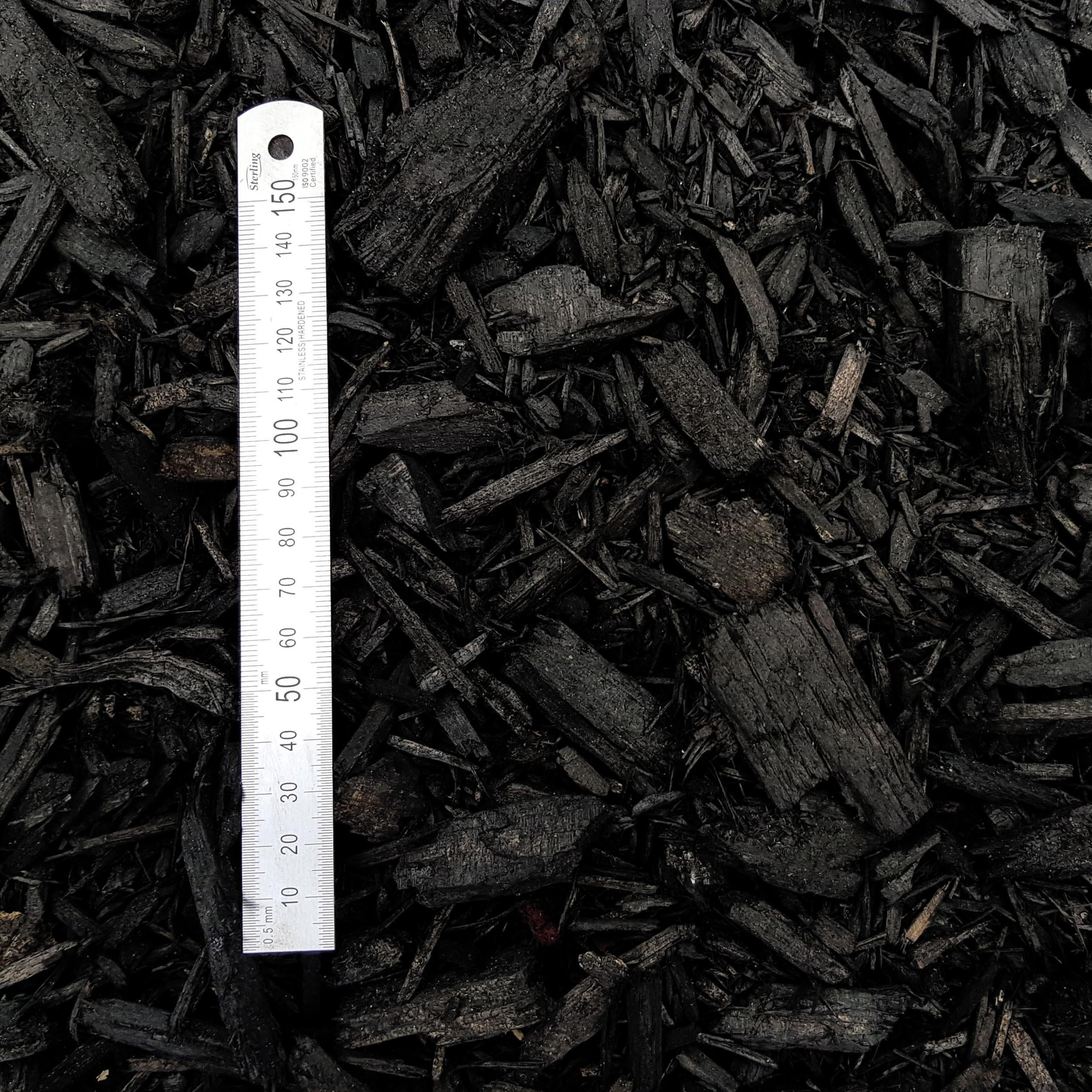black mulch 2.jpg
