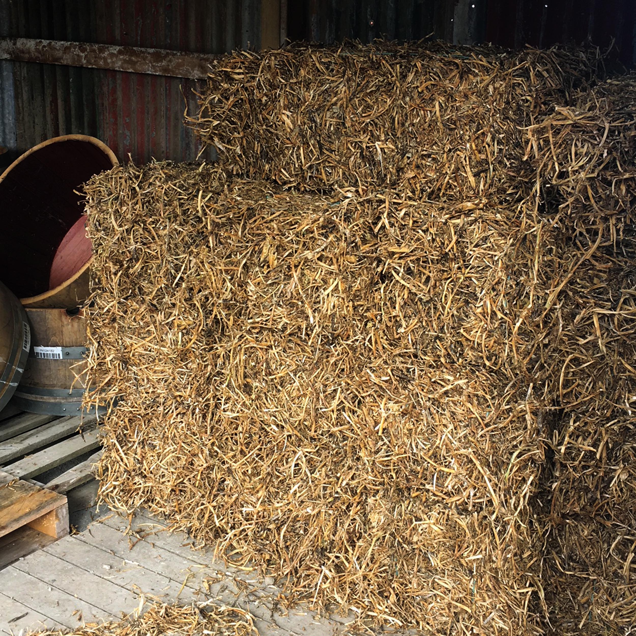 pea straw.jpg