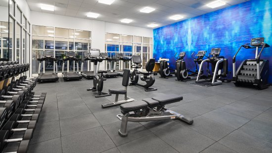 Gym - 24/7 Workout Room with Cardio and Fitness Equipment