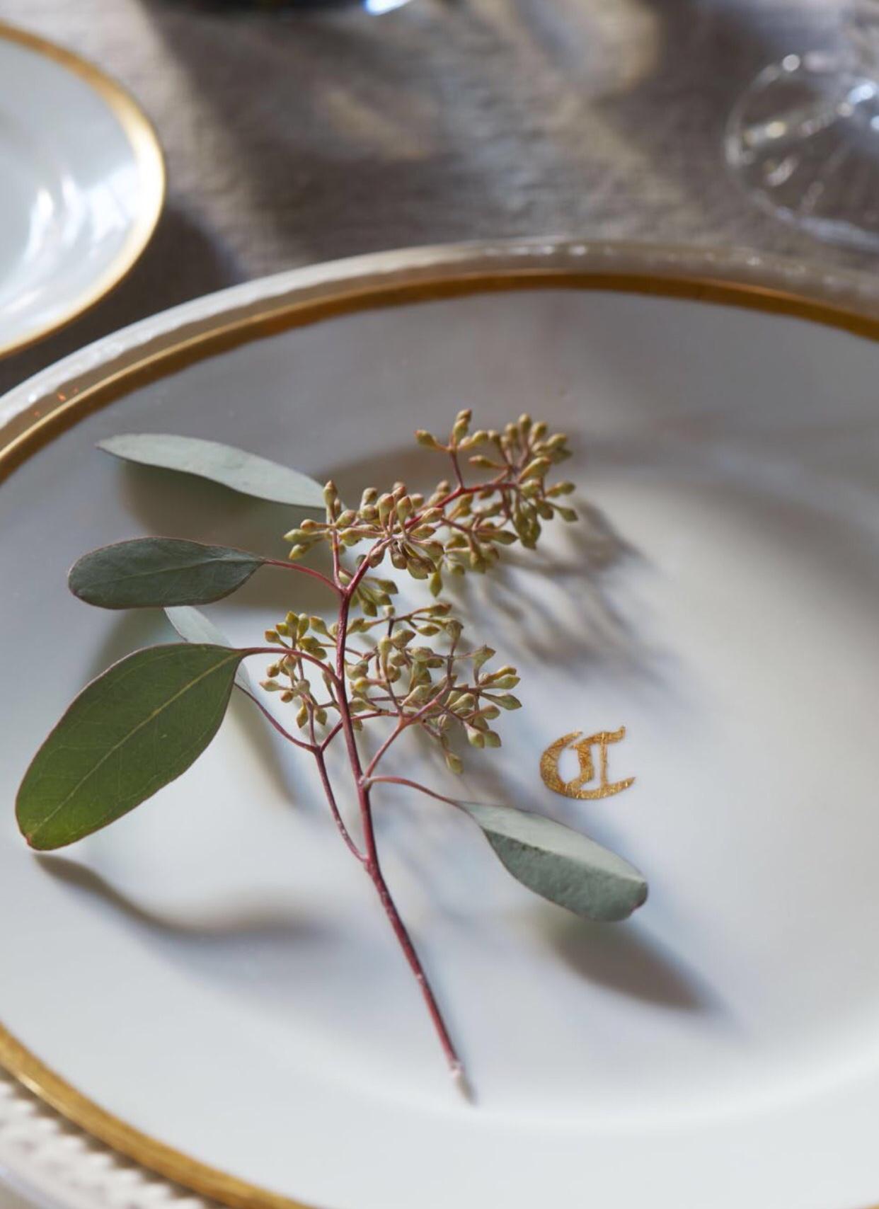 H&H Cressey Plate .jpg