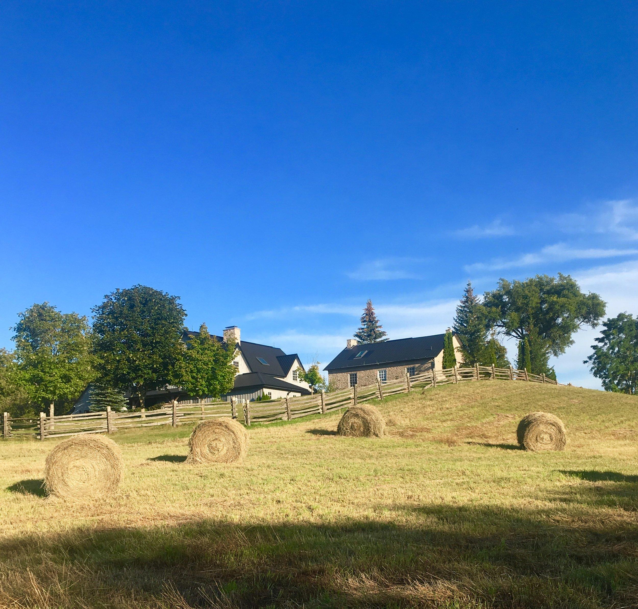 Summer Hay Bales & Drumlin.jpg