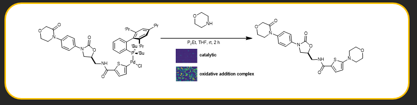 "Mycah R. Uehling, Ryan P. King, Shane W. Krska, Tim Cernak* and Stephen L. Buchwald*. ""Pharmaceutical Diversification via Palladium Oxidative Addition Complexes"",  Science ,  2019 ,  363 , 405—408.  [link]"