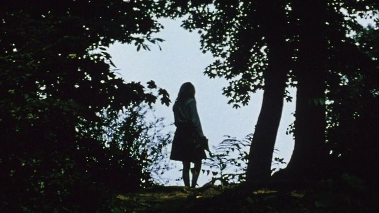 #78) Diaries, Notes and Sketches: Walden - (1969 - dir. Jonas Mekas)