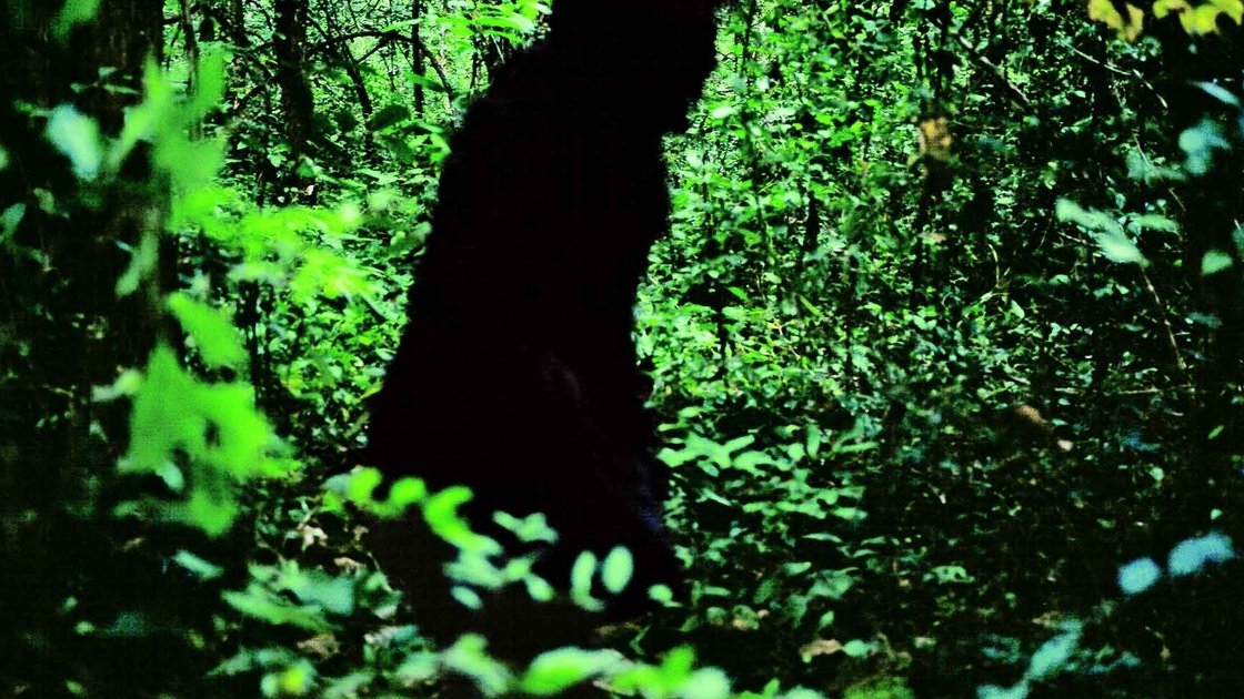 #40) Uncle Boonmee Who Can Recall His Past Lives - (2010 - dir.Apichatpong Weerasethakul)