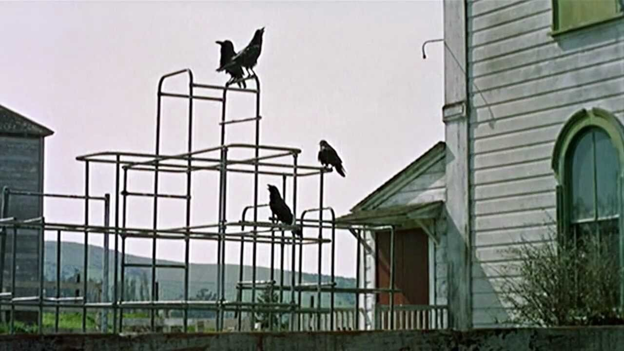 #46) The Birds - (1963 - dir. Alfred Hitchcock)