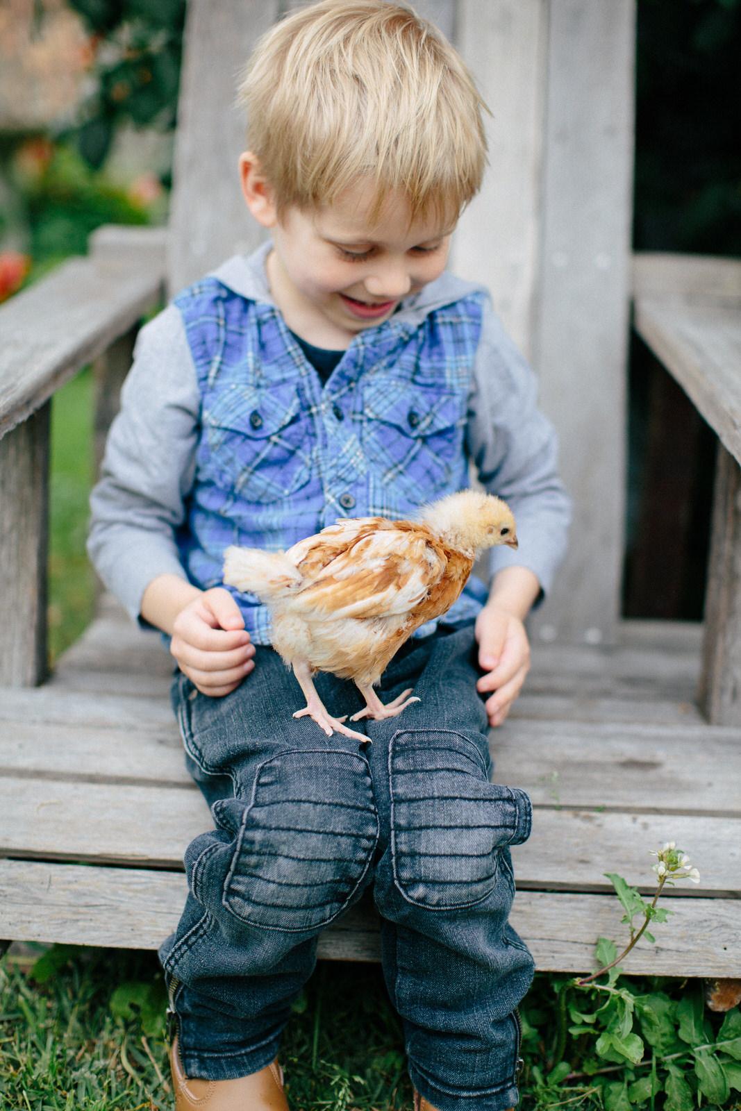 Sydney-Family-Photography-chicken.jpg