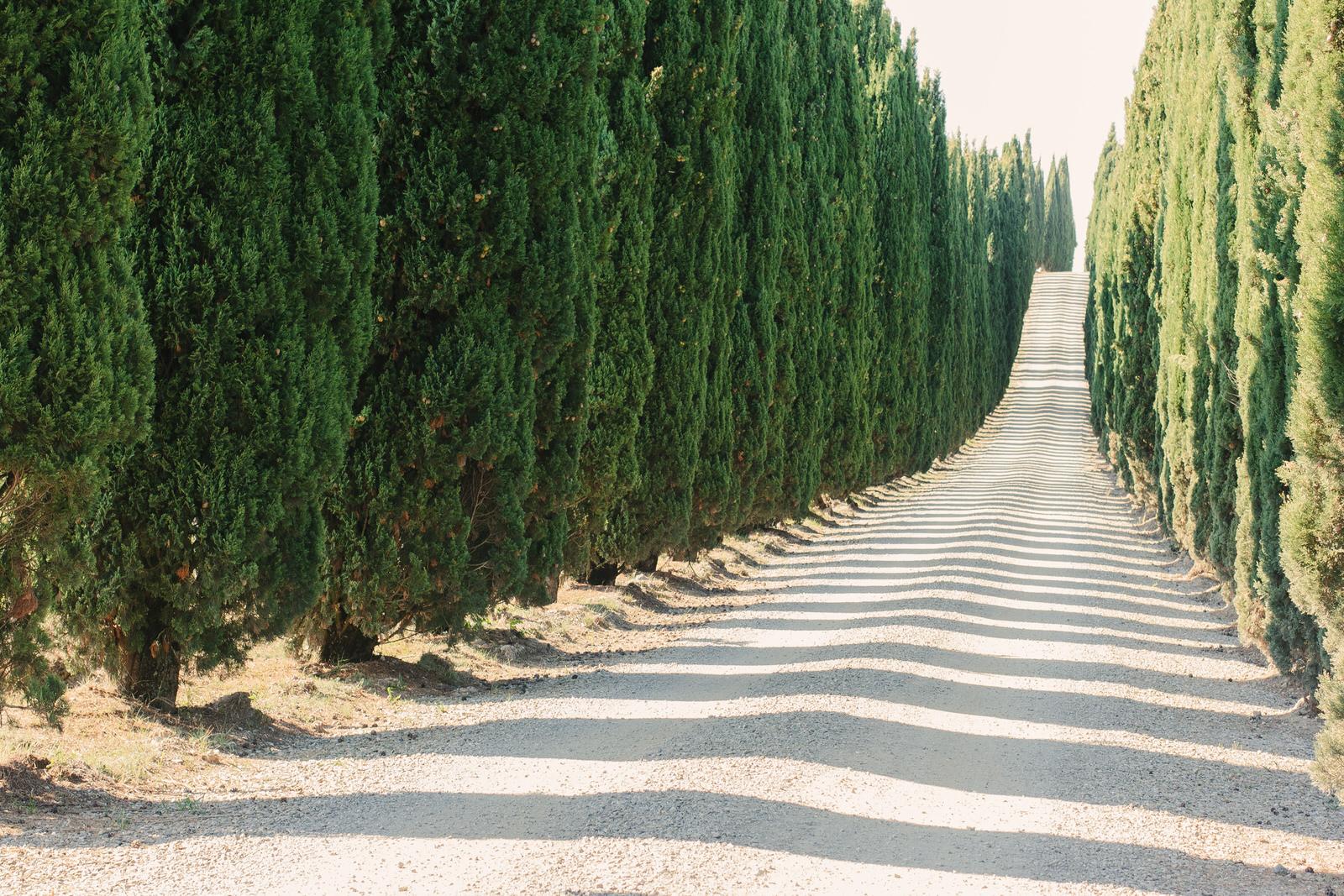 San Gimignano Tuscany Italy Fine Art Photography _MG_1910.jpg