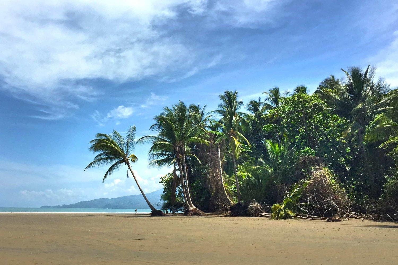 beach_costa_rica-min.jpg