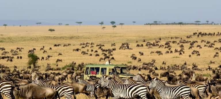 sayari-camp-game-drive-migration-serengeti-safari__768x346-wide.jpg