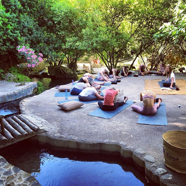 That time we practiced Yin in paradise with @isabellankesteryoga ❤️ #ventureintowellness