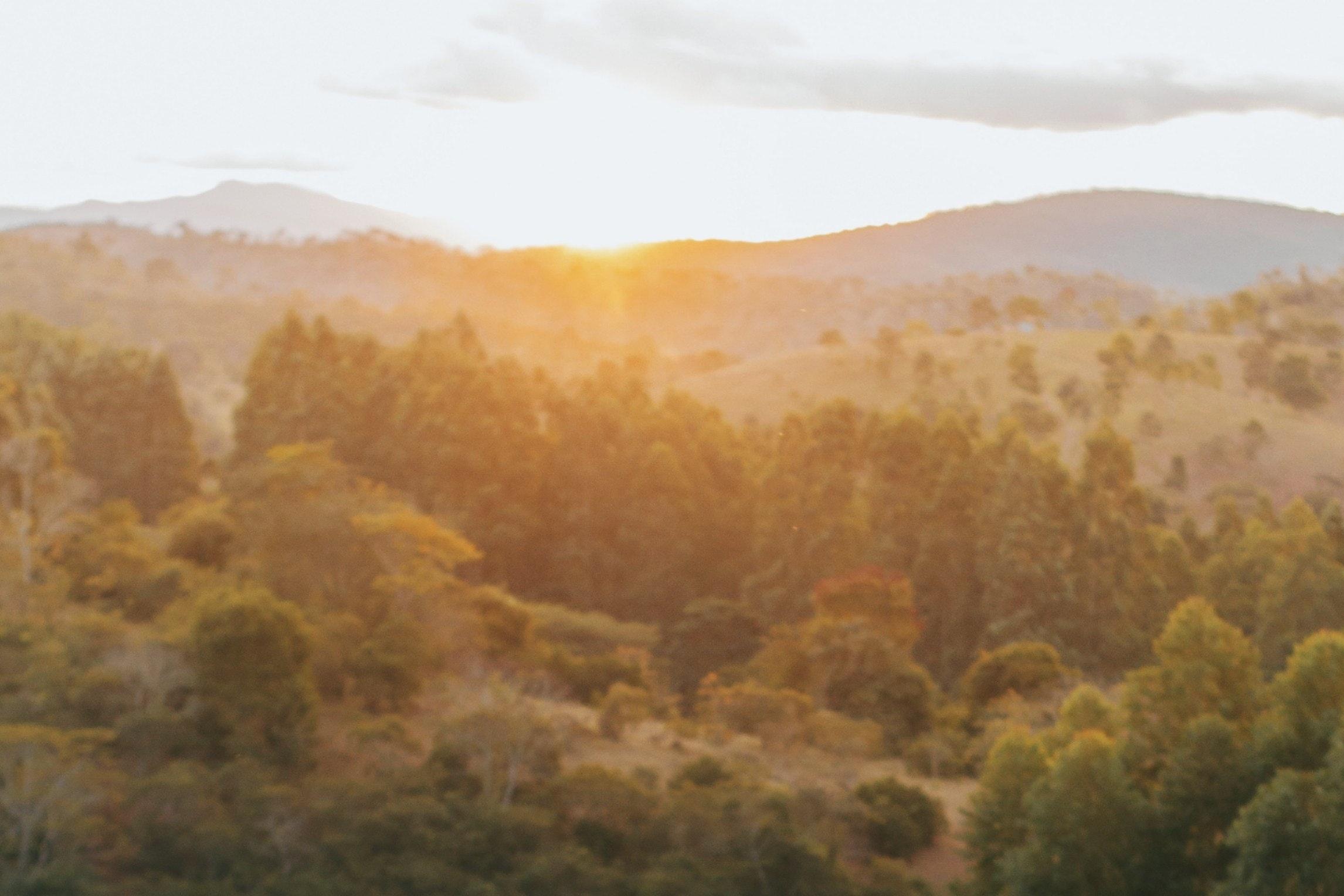 countryside-dawn-fall-2695672.jpg