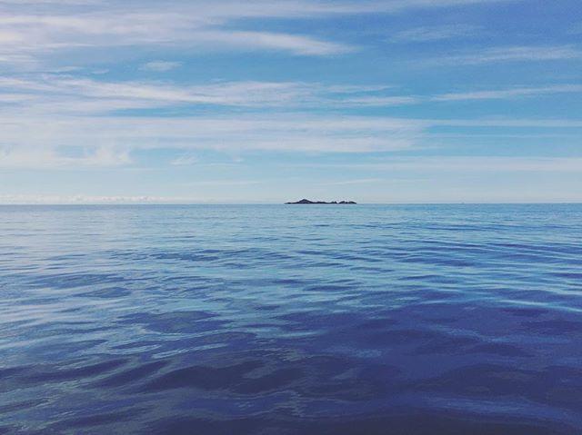 Stunning day on the water #sistersbeach #sistersbeachcommunity #wynyardandsurrounds