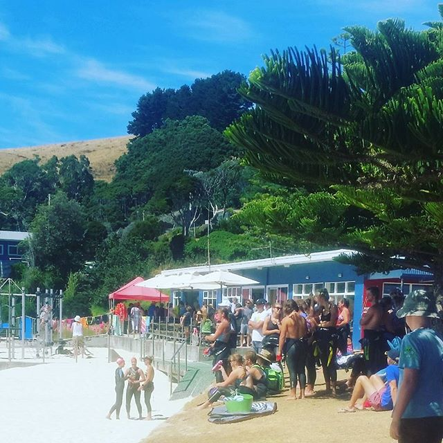 Boaty packed #oceanswimseries #nwtasmania #instatassie #boatharboursurfclub